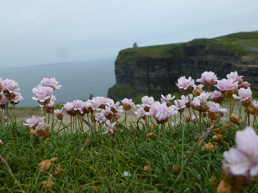 Irland_2013_380.jpg