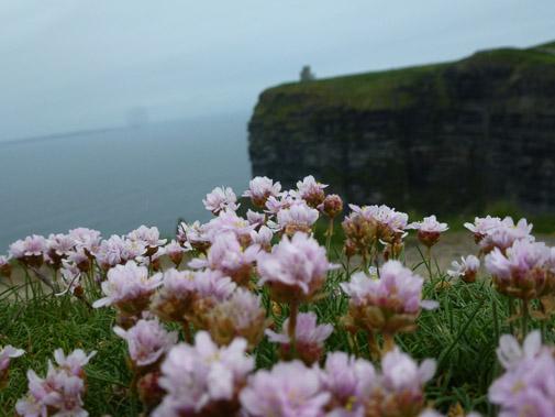 Irland_2013_383.jpg
