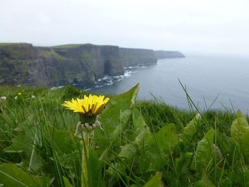 Irland_2013_422.jpg