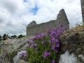 Irland_2013_151.jpg
